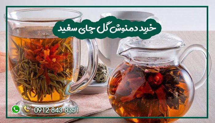 خرید دمنوش گل چای سفید