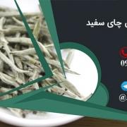 خرید و فروش چای سفید