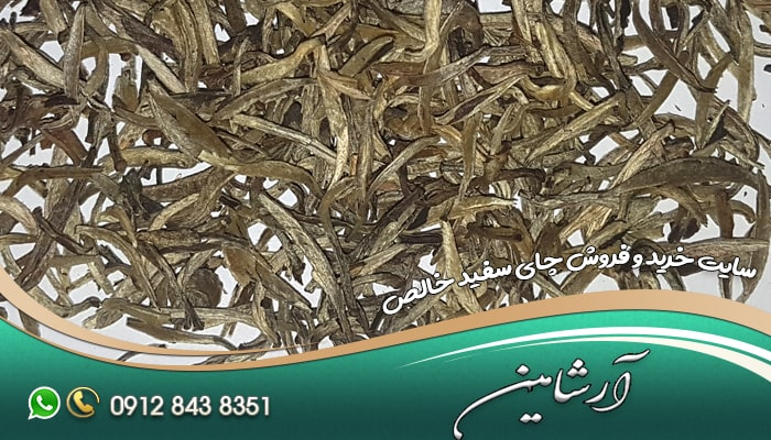 سایت خرید و فروش چای سفید