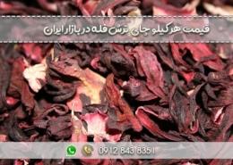 قیمت هر کیلو چای ترش