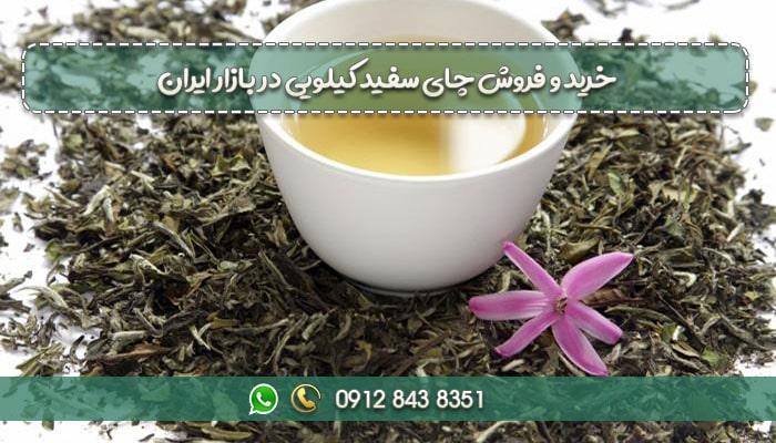 خرید و فروش چای سفید کیلویی در بازار ایران-min