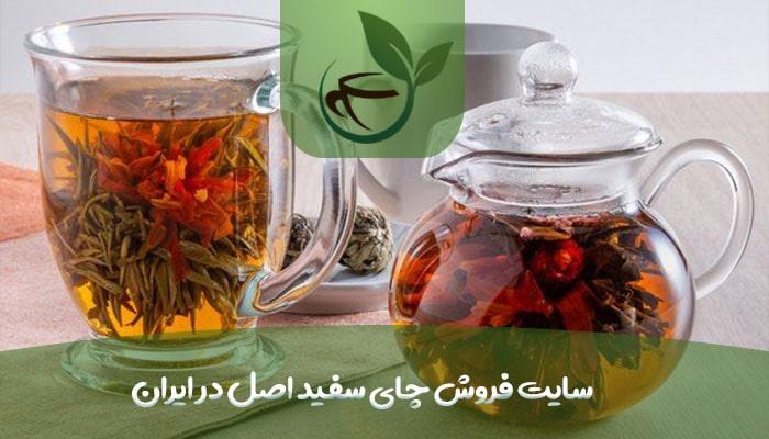 سایت فروش چای سفید اصل در ایران-min