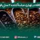 شرکت نسکافه در تهران