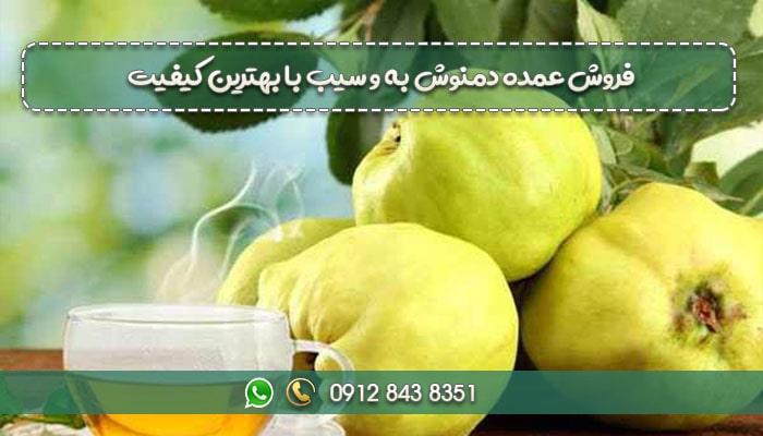 فروش عمده دمنوش به و سیب با بهترین کیفیت-min