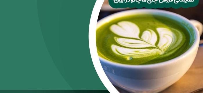 نمایندگی فروش چای ماچانو