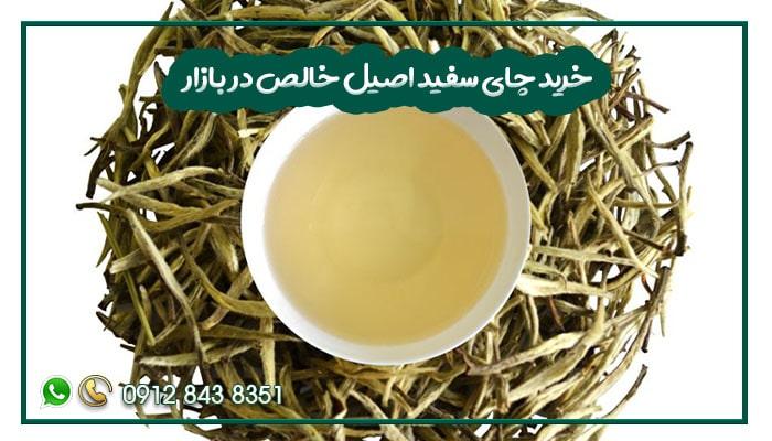 خرید چای سفید اصیل خالص در بازار-min